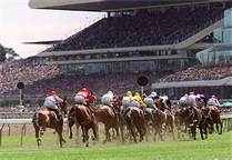 melb cup