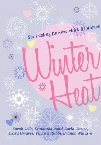 Winter Heat cover [614266]